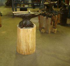 PW  124# on a Yellow Birtch Stump