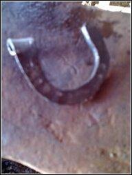 horseshoe keychain