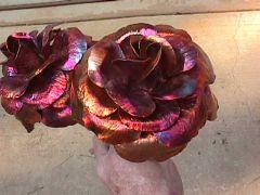 Copper Roses close-up