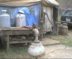 Mushroom Bell 2