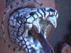 snake head 2