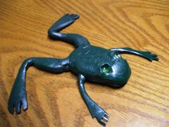 steel frog