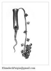 Iron_flower_Fern