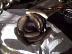 wall_rose
