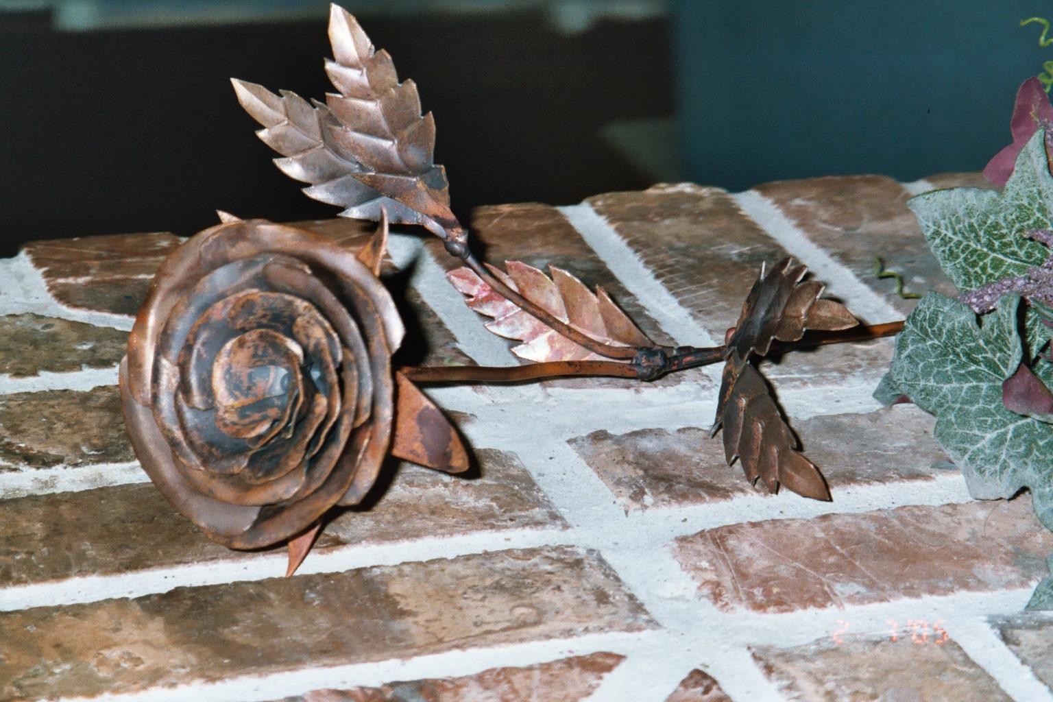 Copper Rose 5