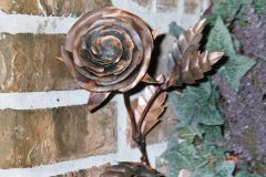 Copper Rose 4