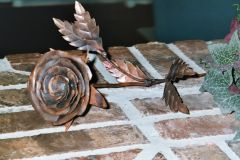 Copper Rose 5