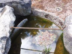 Pond brace