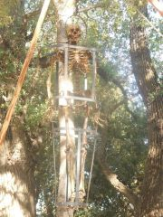 Commissioned gibbet