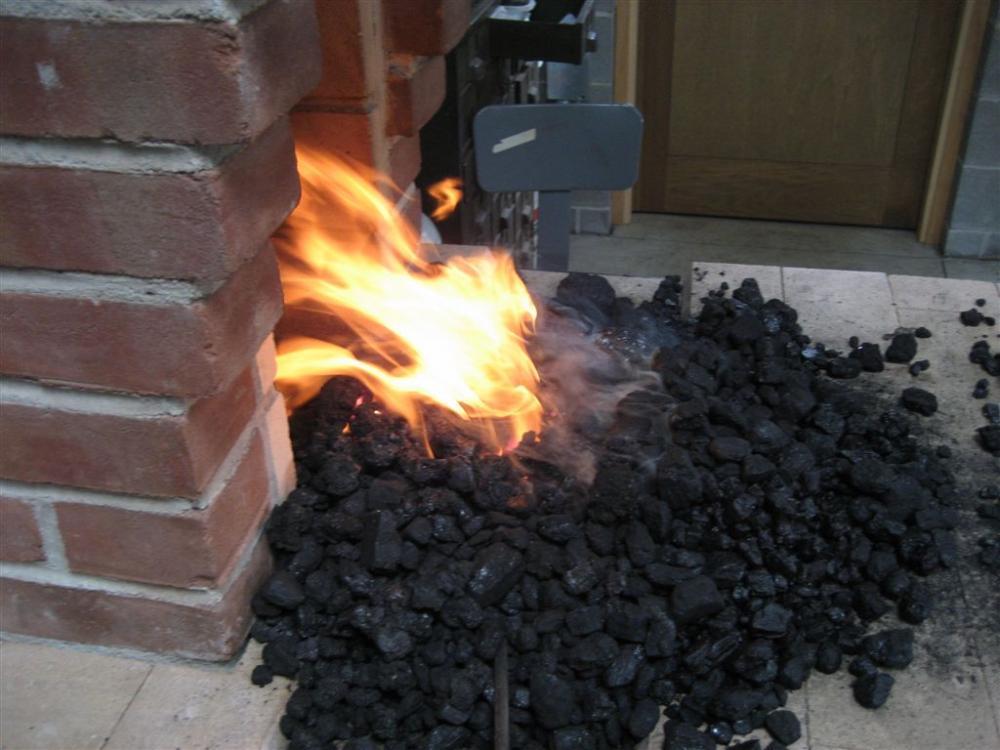IMG_1945 good coal.jpg