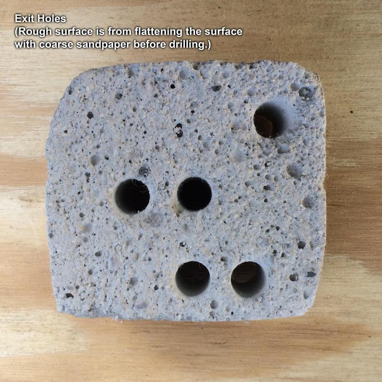 drilled-kast-o-lite-exit-holes.thumb.jpg.95ae898709491e38fbc91d84b0c9423f.jpg