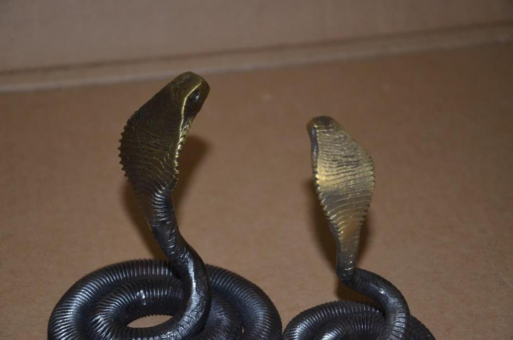 cobras 4.JPG
