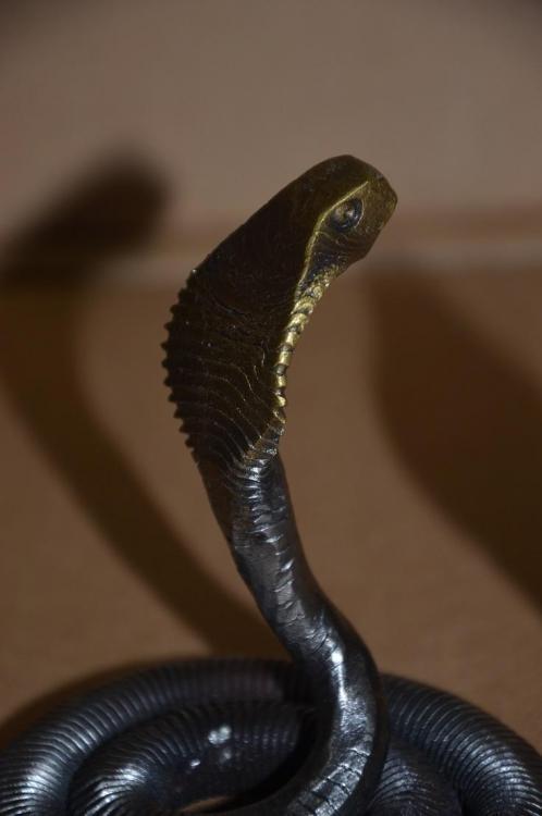 cobras 5.JPG