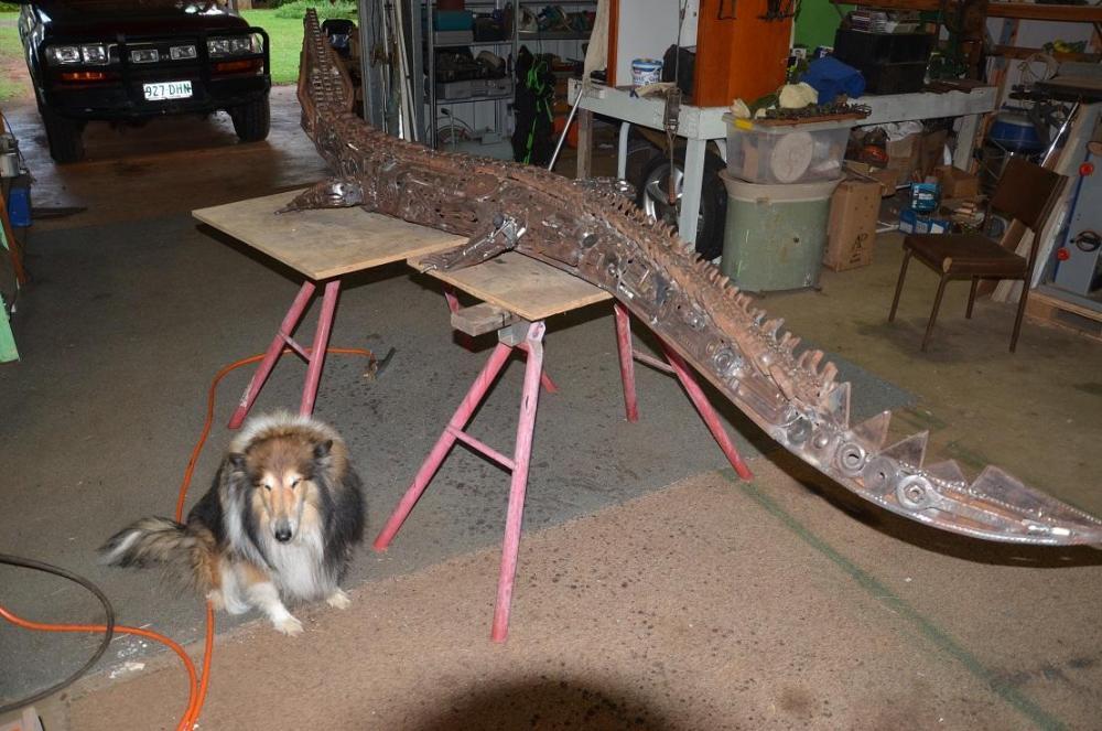 croc12 dog approved.JPG