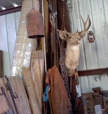deer_supervisor.jpg.2aee1141db3db7d76557661711585b37.jpg