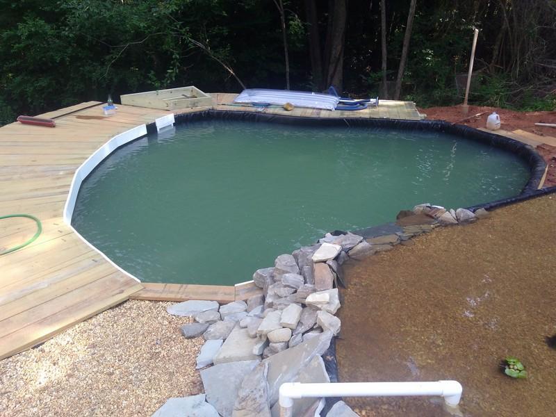 new pond 10 (Copy).jpg