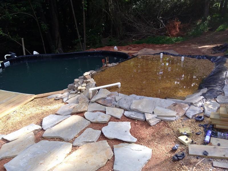 new pond 7 (Copy).jpg