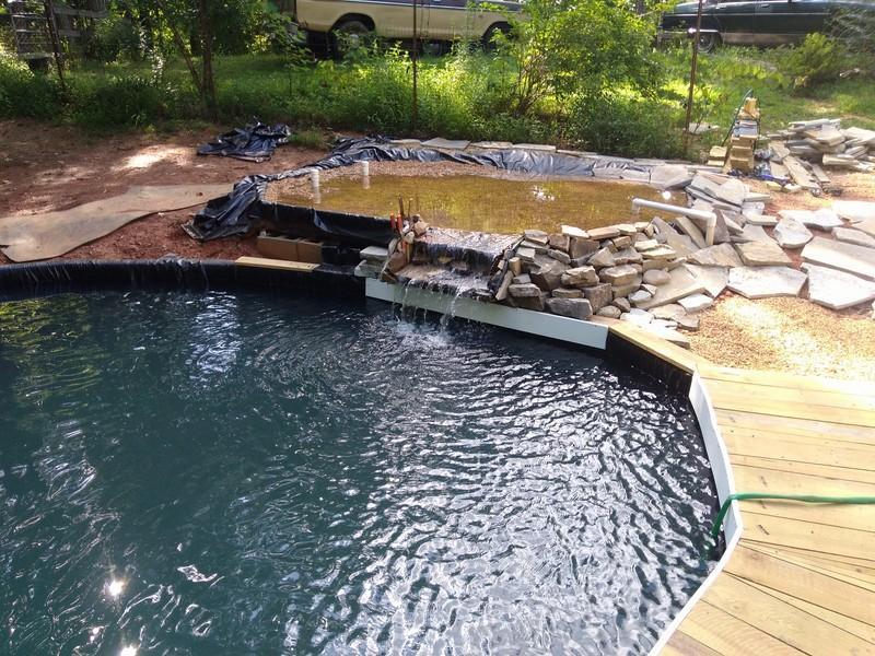 new pond 6 (Copy).jpg