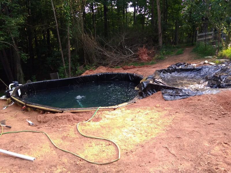 new pond 4 (Copy).jpg