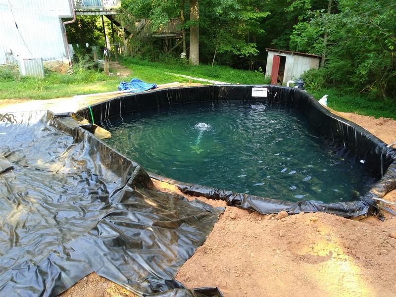 new pond 5 (Copy).jpg