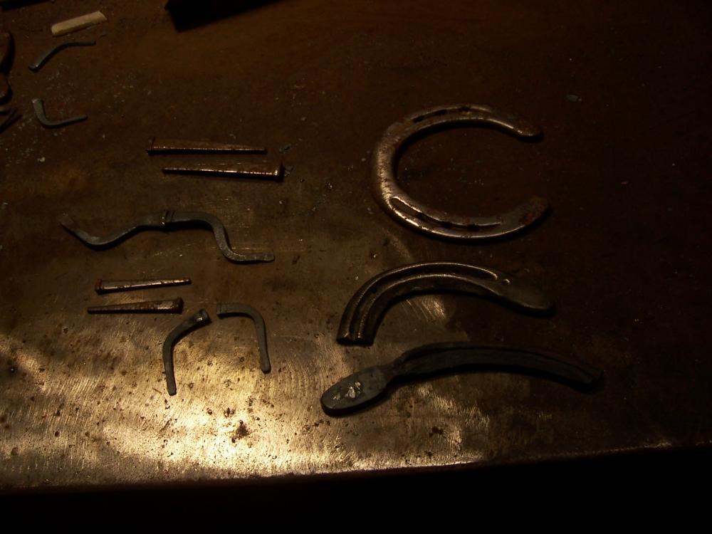 1707476166_Lizardparts.thumb.JPG.960a417e37219392e017d3718f74c257.JPG